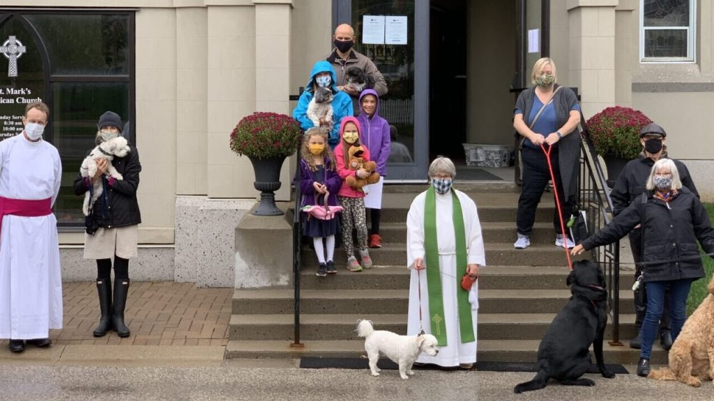 Blessing of Animals 2020